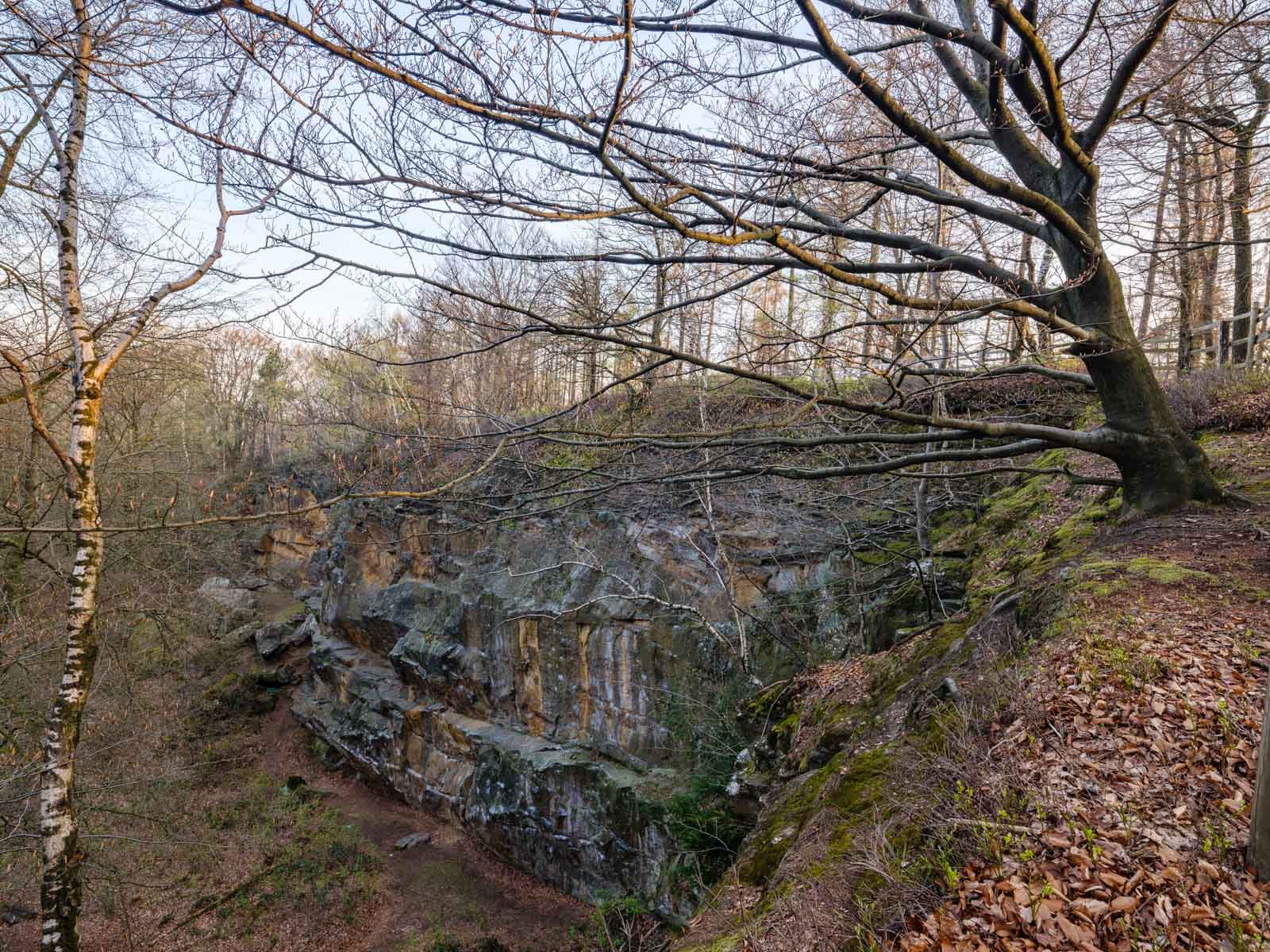 Old quarry in the Teutoburg Forest ('Halleluja' quarry) near Bielefeld (Germany).