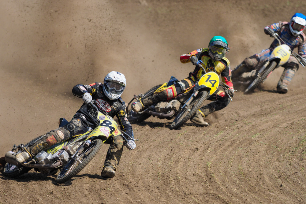 Grasstrack racing at Leineweberring on May 28, 2017.